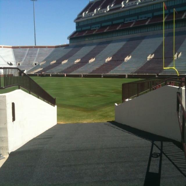 ramp stadium outdoor carpet rug